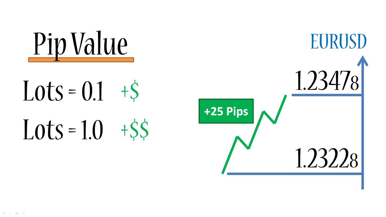 what is a forex pip